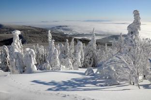 Zima w Beskidach (masyw Babiej Góry)