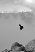 W Alpach Julijskich
