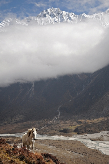 Dolina Langtang