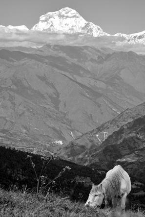 Na przełęczy Deurali