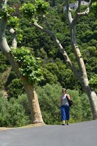 Poznając Cap Corse