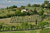 W Toskanii