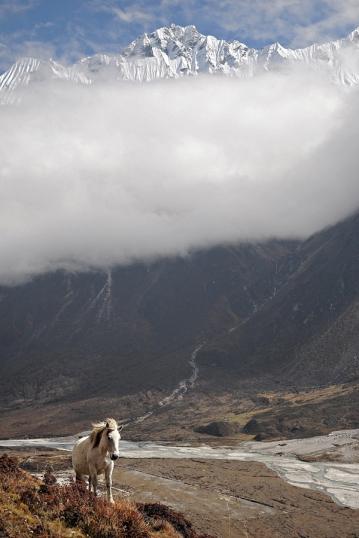 Dolina Langtang (Nepal) - I nagroda w roku 2015 (fot. Kuba)