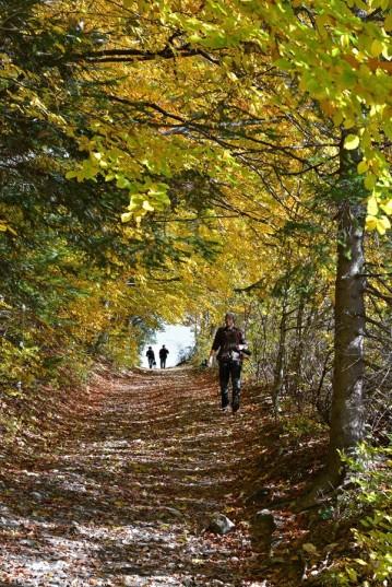 Jesienny spacer po Pieninach