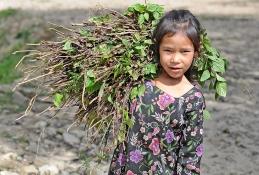 Dziewczynka z Helambu