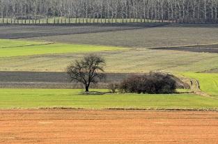 Wiosenny luty pod Klimontem