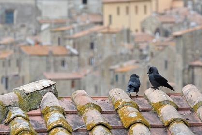 Pitigliano - miasto na skale