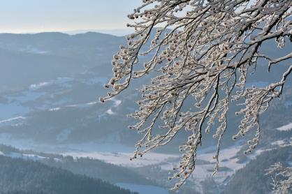 Zima w Pieninach