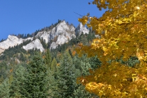 Jesień w Pieninach