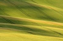 Morawy Południowe (Czechy)