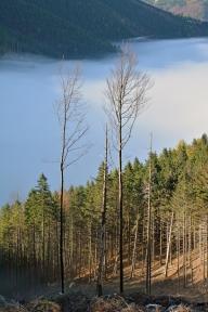 Poranek na szlakach Małej Fatry (Słowacja)