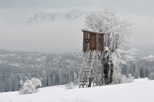 Pejzaż zimowy