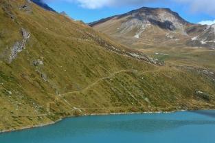 Widokówka alpejska