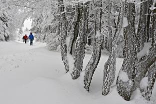 Pejzaż zimowy (Radegast)