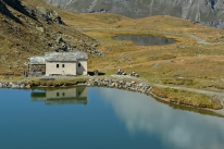 Alpejska sielanka (pod Matterhornem)