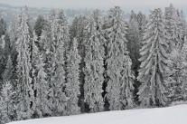 Podtatrze zimą