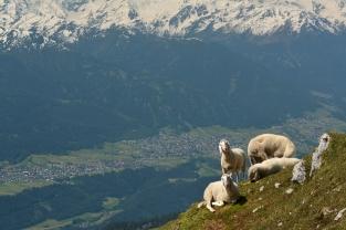 Spotkanie (Tyrol)