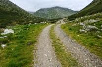 Na alpejskich szlakach