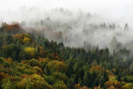 Szypska Fatra w barwach jesiennych
